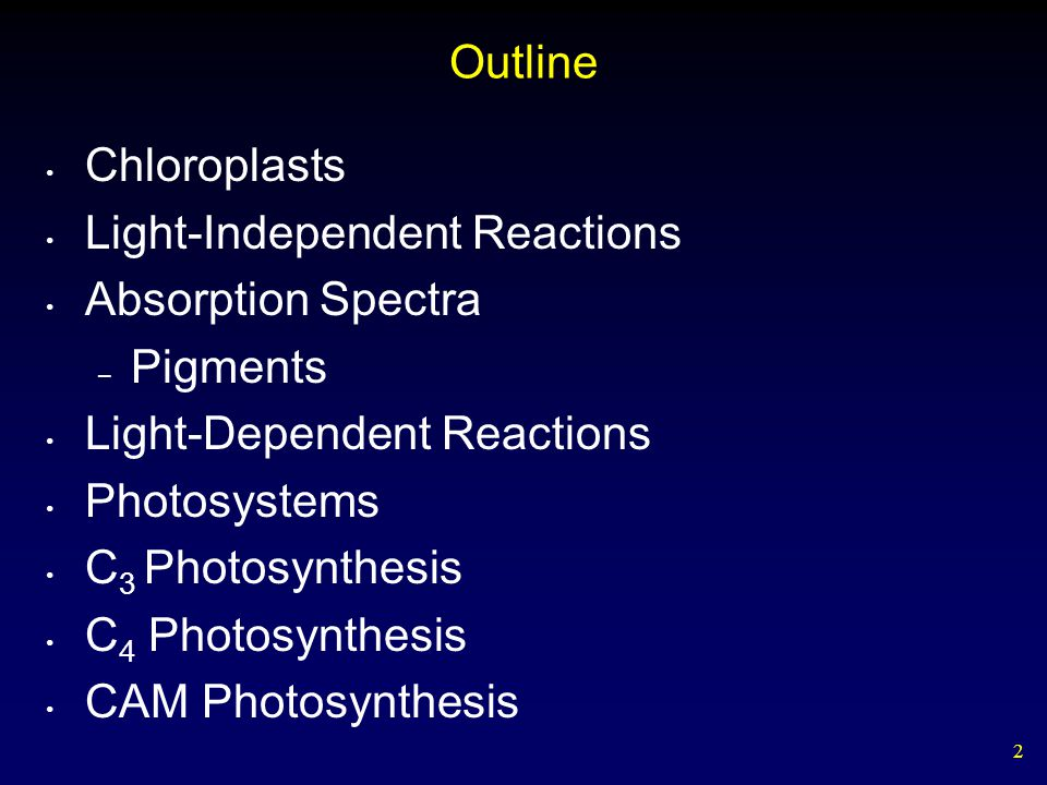 2 Outline Chloroplasts Light-Independent Reactions Absorption Spectra – Pigments Light-Dependent Reactions Photosystems C 3 Photosynthesis C 4 Photosynthesis CAM Photosynthesis