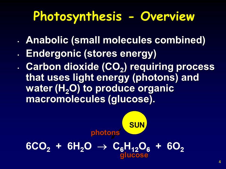 4 Photosynthesis - Overview Anabolic (small molecules combined) Anabolic (small molecules combined) Endergonic (stores energy) Endergonic (stores energy) Carbon dioxide (CO 2 ) requiring process that uses light energy (photons) and water (H 2 O) to produce organic macromolecules (glucose).