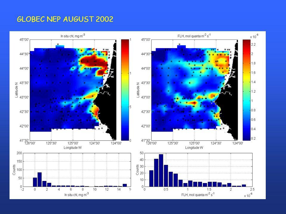 GLOBEC NEP AUGUST 2002