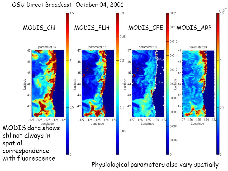 MODIS_Chl MODIS_FLH MODIS_CFE MODIS_ARP OSU Direct Broadcast October 04, 2001 MODIS data shows chl not always in spatial correspondence with fluorescence Physiological parameters also vary spatially