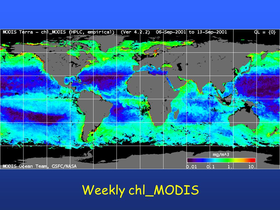 Weekly chl_MODIS