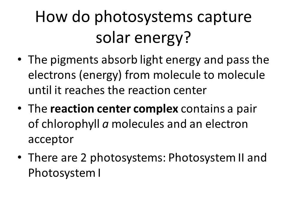 How do photosystems capture solar energy.