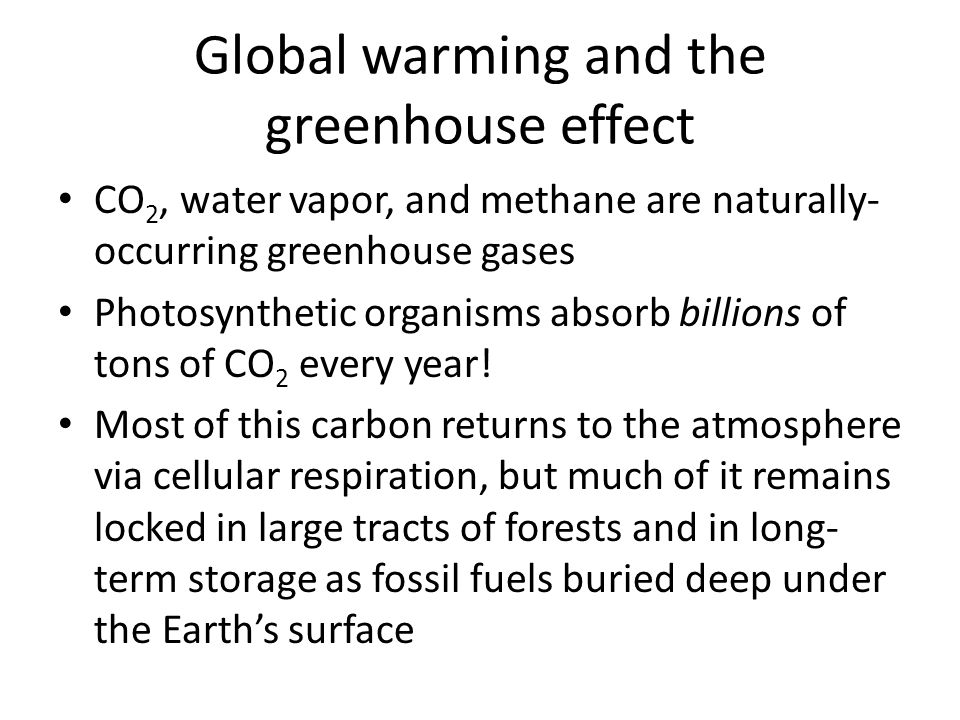 Global warming and the greenhouse effect CO 2, water vapor, and methane are naturally- occurring greenhouse gases Photosynthetic organisms absorb billions of tons of CO 2 every year.