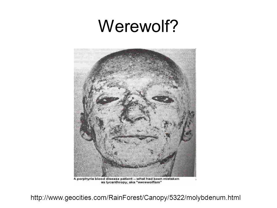 Werewolf http://www.geocities.com/RainForest/Canopy/5322/molybdenum.html