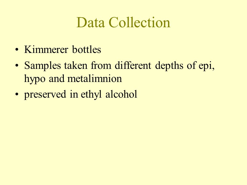 Data Collection Kimmerer bottles Samples taken from different depths of epi, hypo and metalimnion preserved in ethyl alcohol