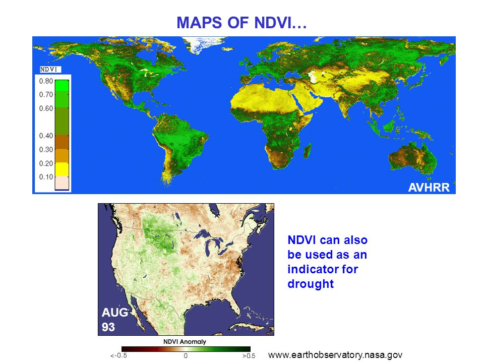 MAPS OF NDVI… AVHRR NDVI can also be used as an indicator for drought www.earthobservatory.nasa.gov AUG 93