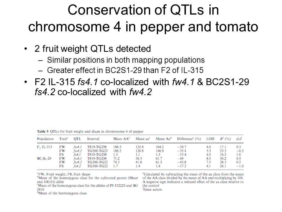 Conservation of QTLs in chromosome 4 in pepper and tomato 2 fruit weight QTLs detected –Similar positions in both mapping populations –Greater effect