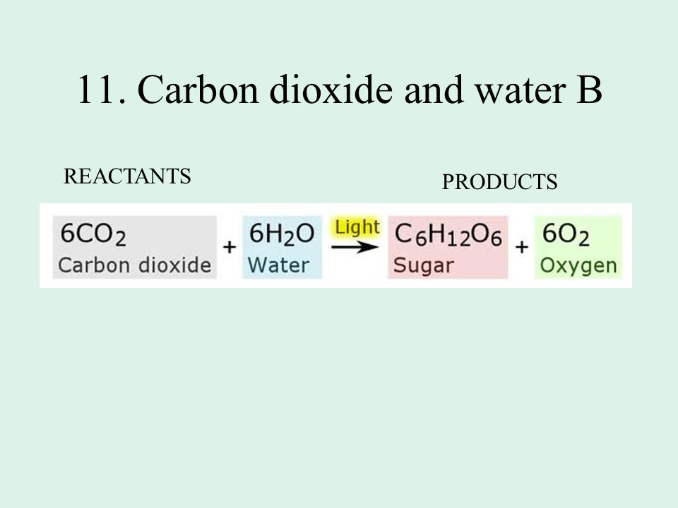 11. Carbon dioxide and water B REACTANTS PRODUCTS