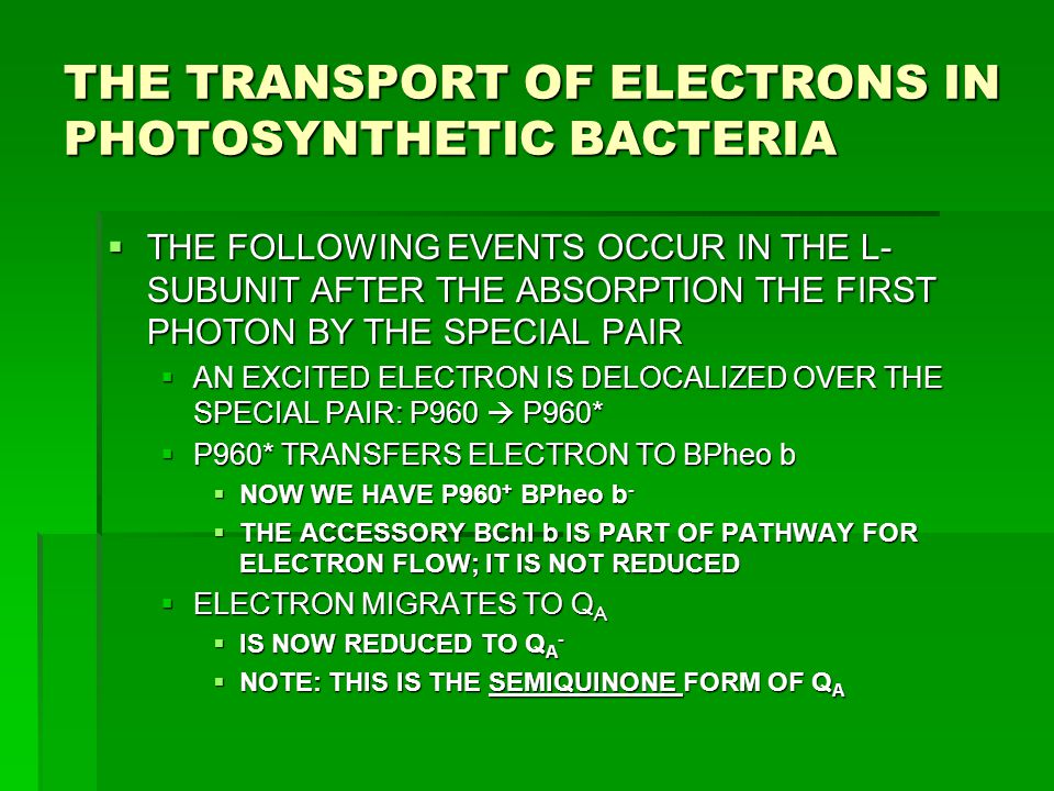 THE TRANSPORT OF ELECTRONS IN PHOTOSYNTHETIC BACTERIA  THE FOLLOWING EVENTS OCCUR IN THE L- SUBUNIT AFTER THE ABSORPTION THE FIRST PHOTON BY THE SPEC