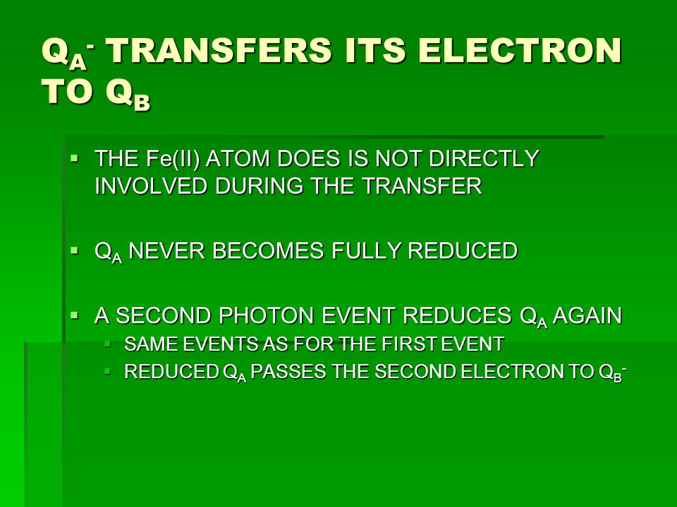 Q A - TRANSFERS ITS ELECTRON TO Q B  THE Fe(II) ATOM DOES IS NOT DIRECTLY INVOLVED DURING THE TRANSFER  Q A NEVER BECOMES FULLY REDUCED  A SECOND P