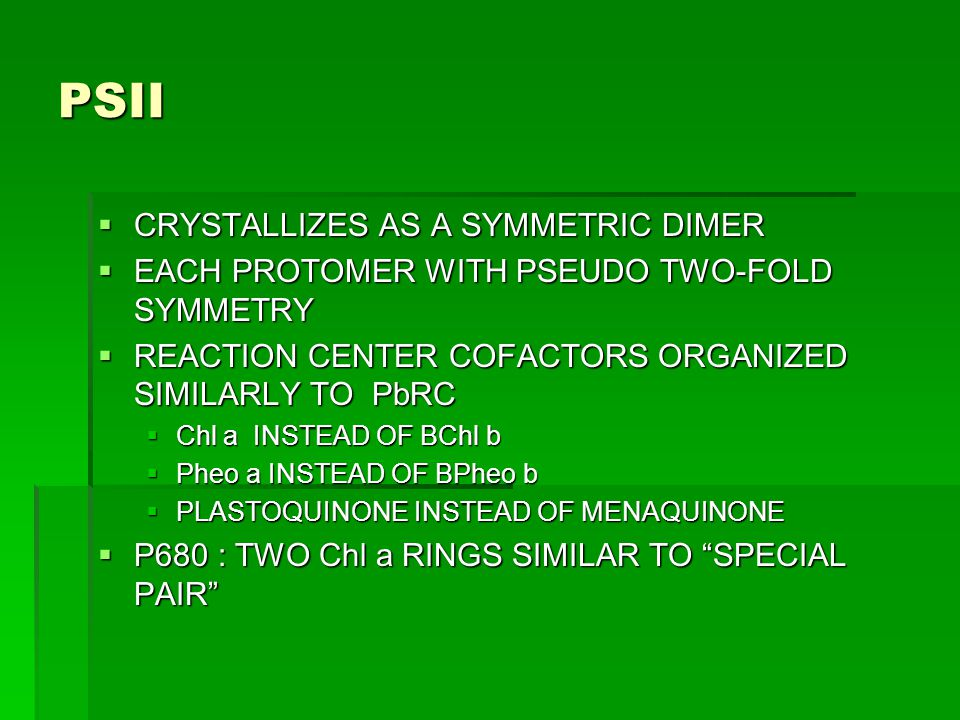 PSII  CRYSTALLIZES AS A SYMMETRIC DIMER  EACH PROTOMER WITH PSEUDO TWO-FOLD SYMMETRY  REACTION CENTER COFACTORS ORGANIZED SIMILARLY TO PbRC  Chl a