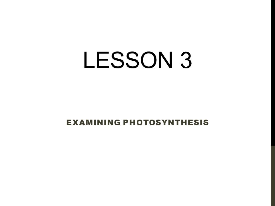 LESSON 3 EXAMINING PHOTOSYNTHESIS