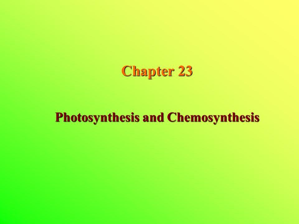 Chapter 23 Photosynthesis and Chemosynthesis