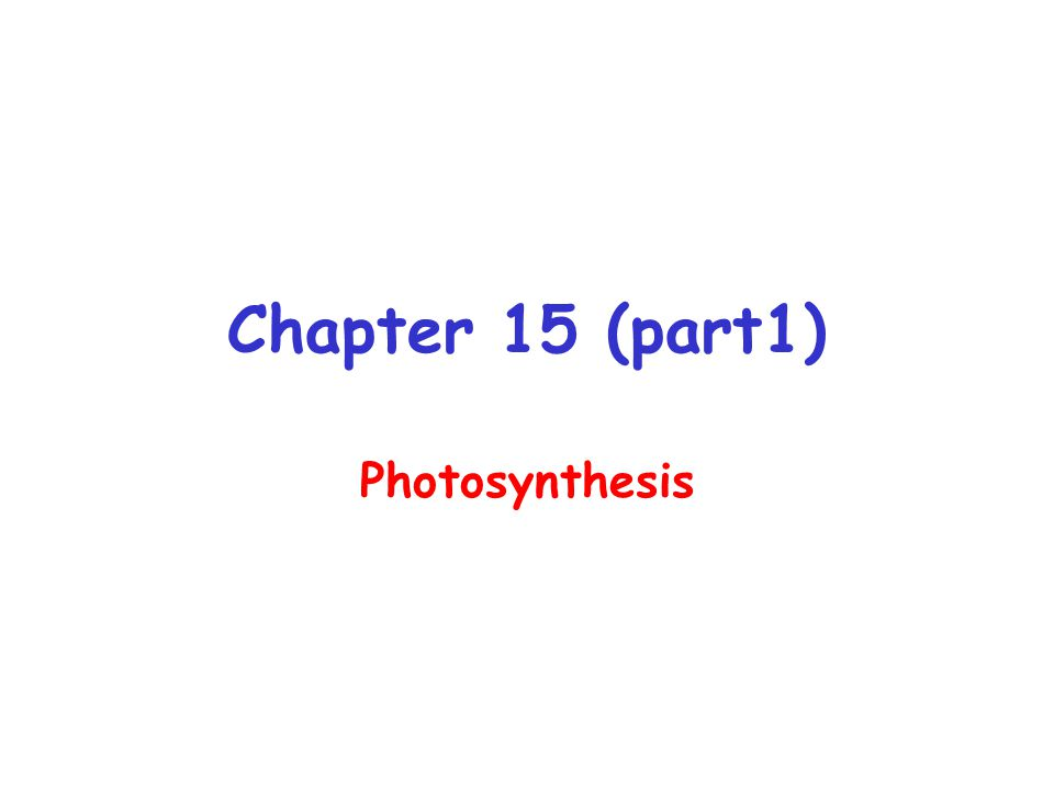 Chapter 15 (part1) Photosynthesis