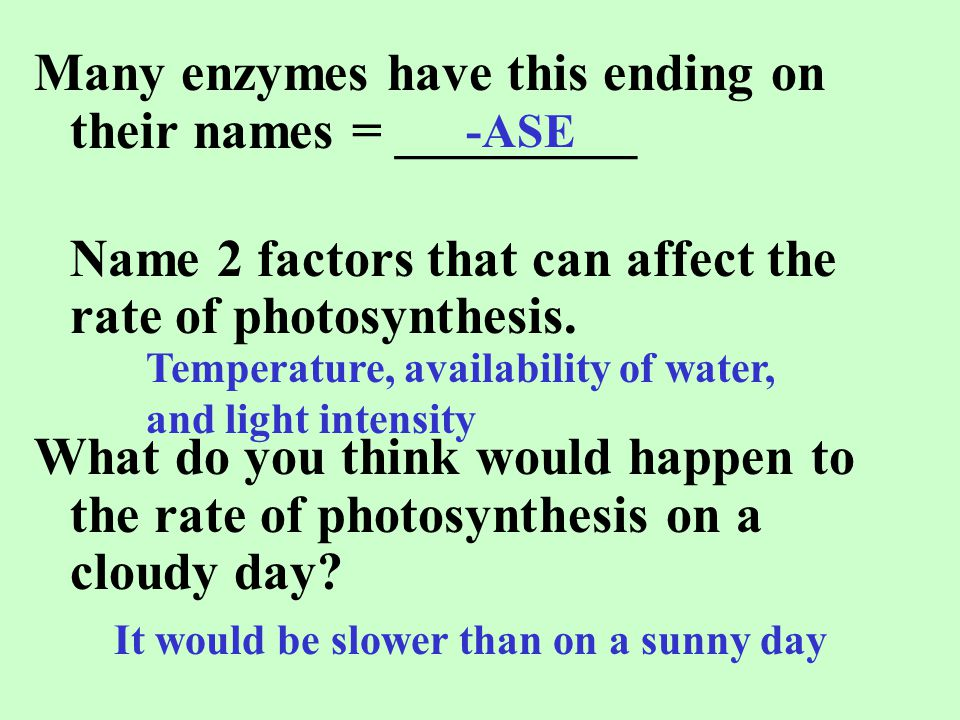 Many enzymes have this ending on their names = _________ Name 2 factors that can affect the rate of photosynthesis. What do you think would happen to