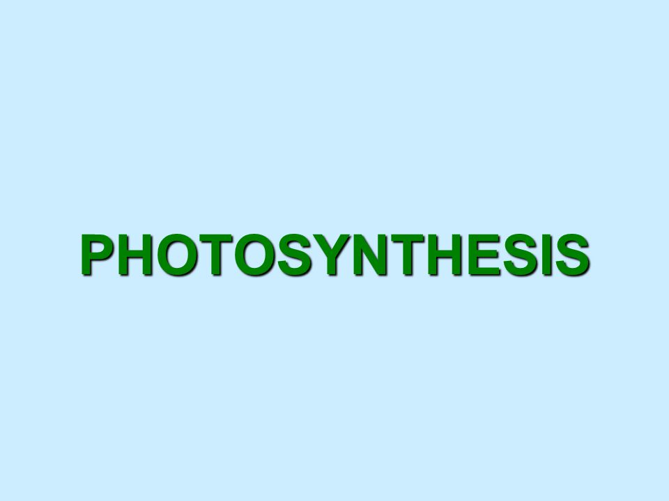 Photosynthesis anabolic, endergonic, carbon dioxide (CO 2 )light energy (photons)water (H 2 O)organic macromolecules (glucose).An anabolic, endergonic, carbon dioxide (CO 2 ) requiring process that uses light energy (photons) and water (H 2 O) to produce organic macromolecules (glucose).