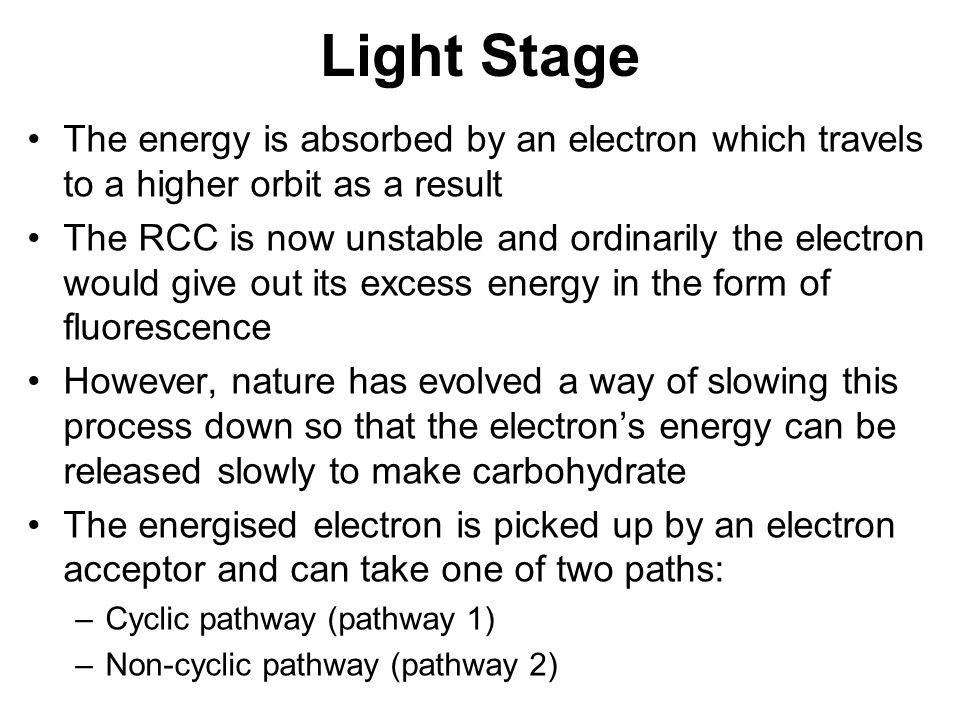 Cyclic Pathway
