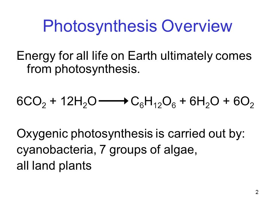 2 Photosynthesis Overview Energy for all life on Earth ultimately comes from photosynthesis.