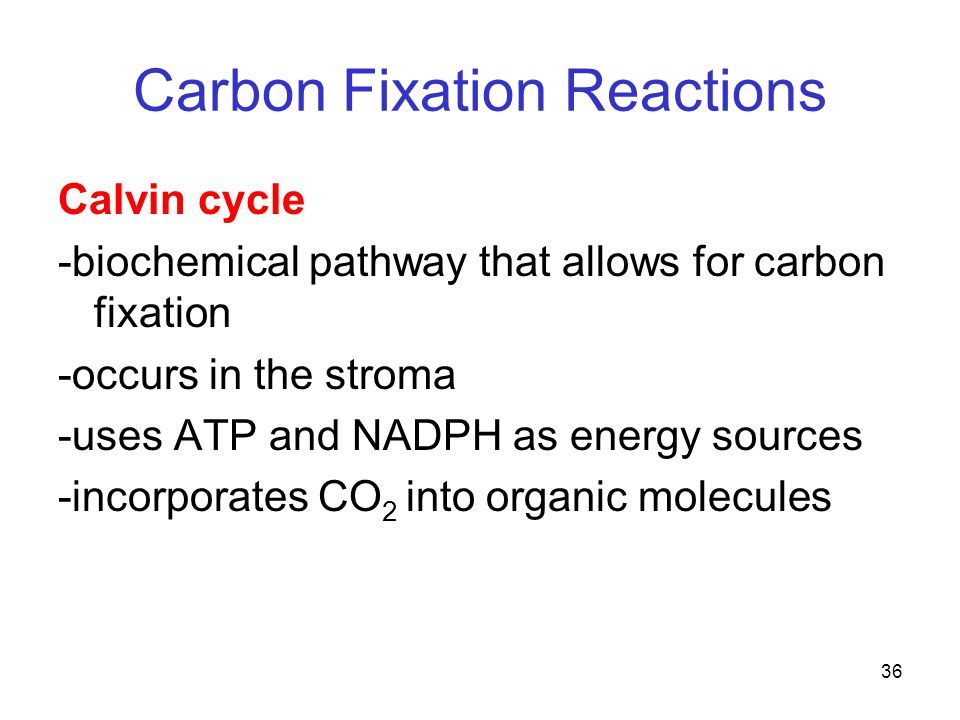 36 Carbon Fixation Reactions Calvin cycle -biochemical pathway that allows for carbon fixation -occurs in the stroma -uses ATP and NADPH as energy sources -incorporates CO 2 into organic molecules