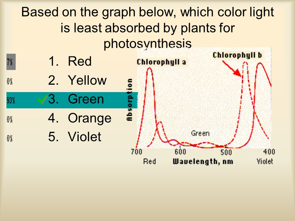 Based on the graph below, which color light is least absorbed by plants for photosynthesis 1.Red 2.Yellow 3.Green 4.Orange 5.Violet
