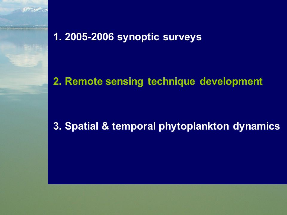 1. 2005-2006 synoptic surveys 2. Remote sensing technique development 3. Spatial & temporal phytoplankton dynamics