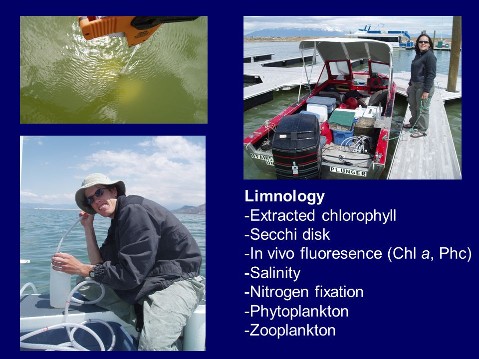 Limnology -Extracted chlorophyll -Secchi disk -In vivo fluoresence (Chl a, Phc) -Salinity -Nitrogen fixation -Phytoplankton -Zooplankton