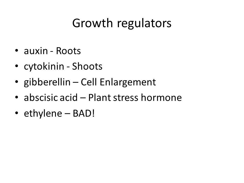 Growth regulators auxin - Roots cytokinin - Shoots gibberellin – Cell Enlargement abscisic acid – Plant stress hormone ethylene – BAD!