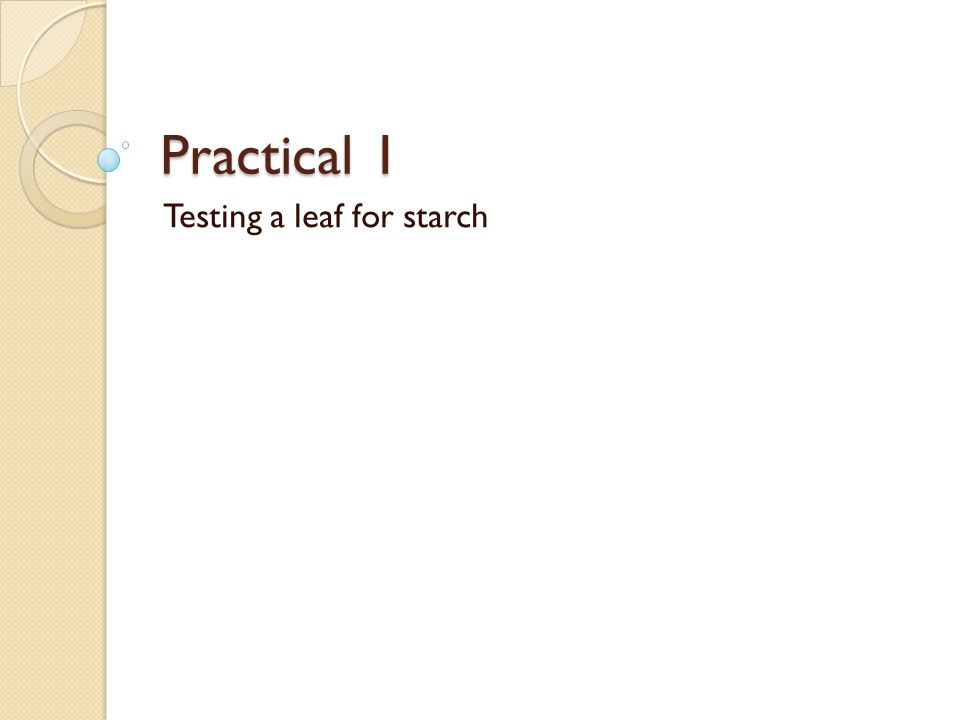 Practical 1 Testing a leaf for starch
