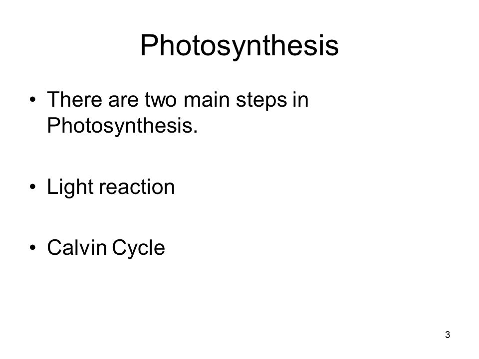 Photosynthesis There are two main steps in Photosynthesis. Light reaction Calvin Cycle 3