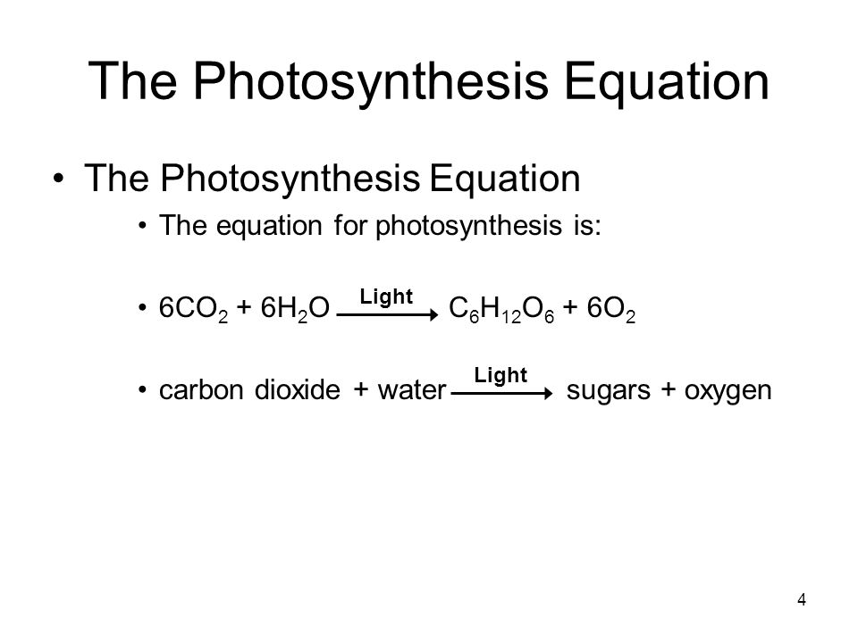 4 The Photosynthesis Equation The equation for photosynthesis is: 6CO 2 + 6H 2 O C 6 H 12 O 6 + 6O 2 carbon dioxide + water sugars + oxygen Light