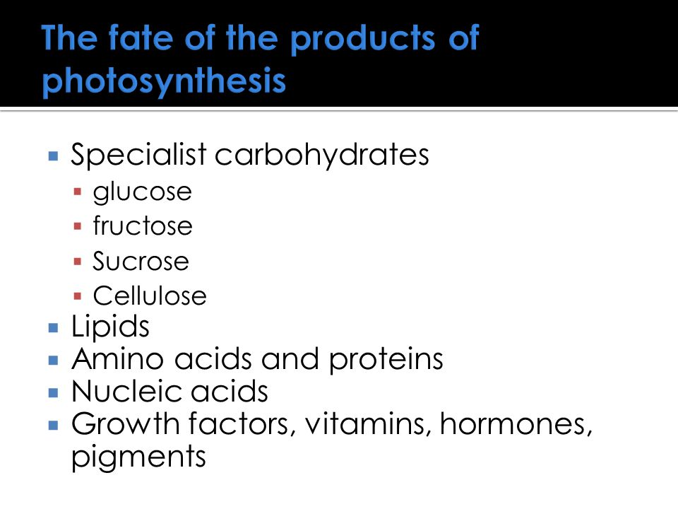 The fate of the products of photosynthesis  Specialist carbohydrates  glucose  fructose  Sucrose  Cellulose  Lipids  Amino acids and proteins 