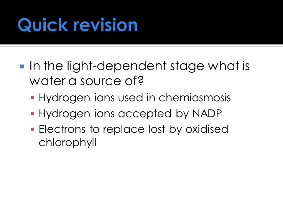 Quick revision  In the light-dependent stage what is water a source of.
