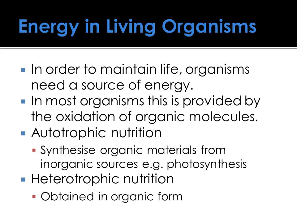 Energy in Living Organisms  In order to maintain life, organisms need a source of energy.  In most organisms this is provided by the oxidation of or