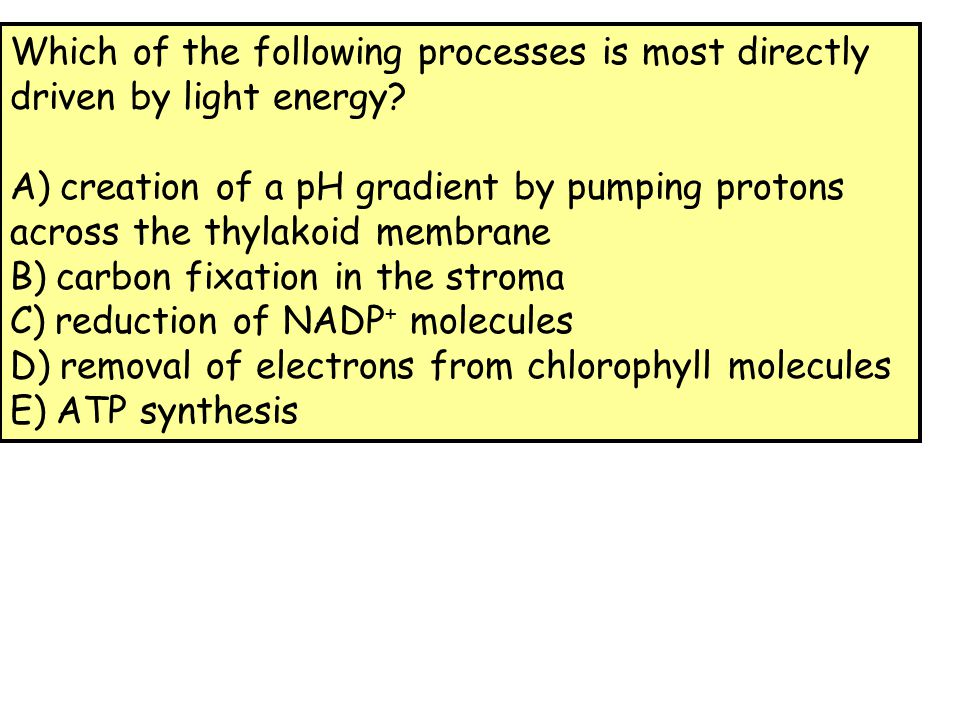Which of the following processes is most directly driven by light energy? A) creation of a pH gradient by pumping protons across the thylakoid membran