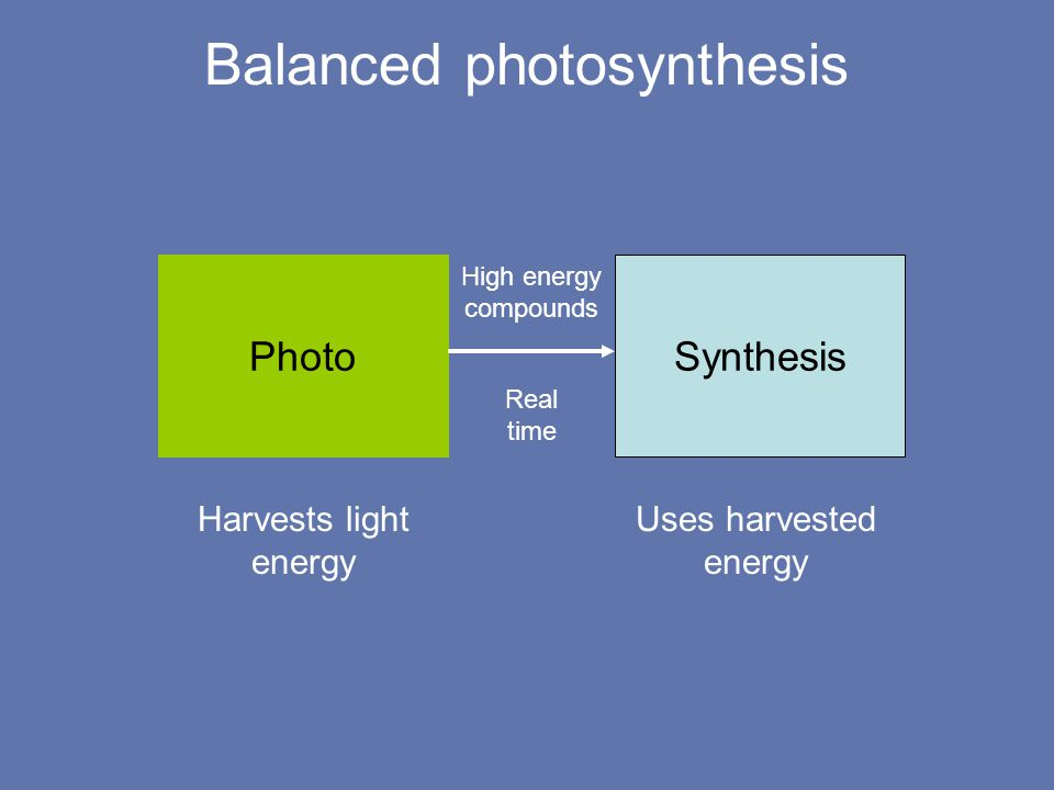 Unbalanced photosynthesis Photo Synthesis High energy compounds bright light produces lots of energy low-capacity biochemical pathways use it slowly Real time Potential for destruction.