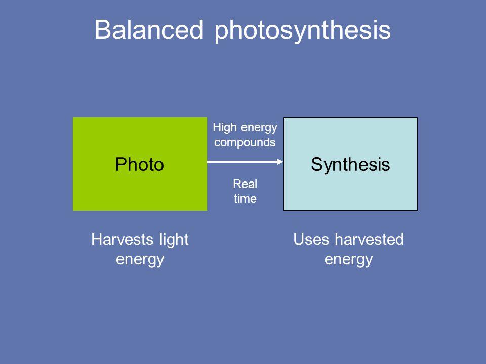 Photosystem geometry Light harvesting complex Reaction center