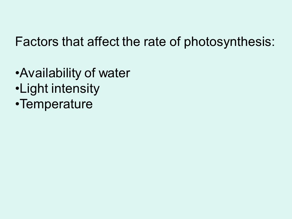 Go to Section: Factors that affect the rate of photosynthesis: Availability of water Light intensity Temperature