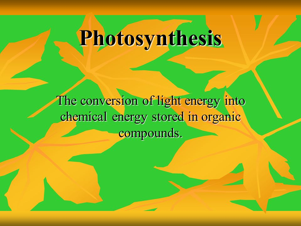 Photosynthesis The conversion of light energy into chemical energy stored in organic compounds.