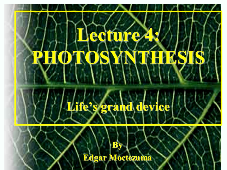 Lecture 4: PHOTOSYNTHESIS Life's grand device By Edgar Moctezuma