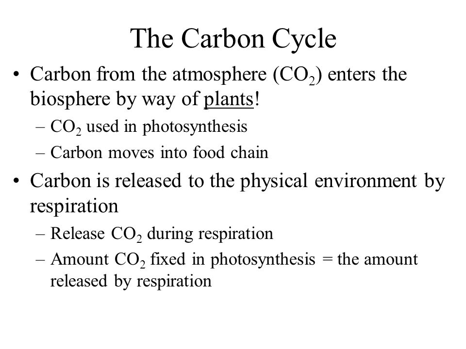 The Carbon Cycle Carbon from the atmosphere (CO 2 ) enters the biosphere by way of plants.