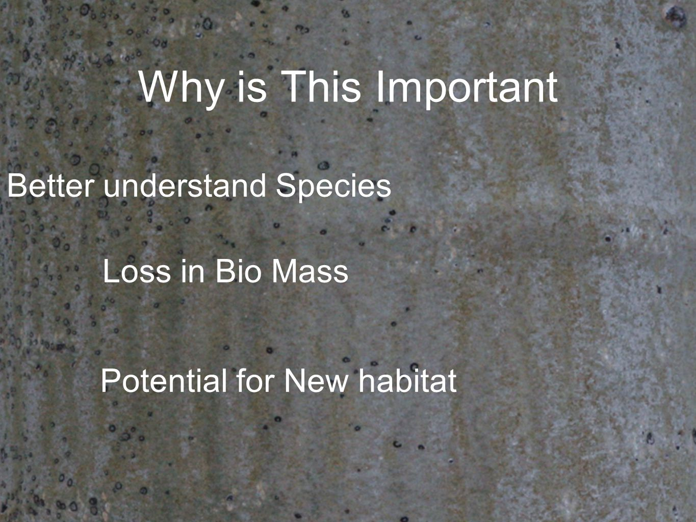 Why is This Important Potential for New habitat Loss in Bio Mass Better understand Species