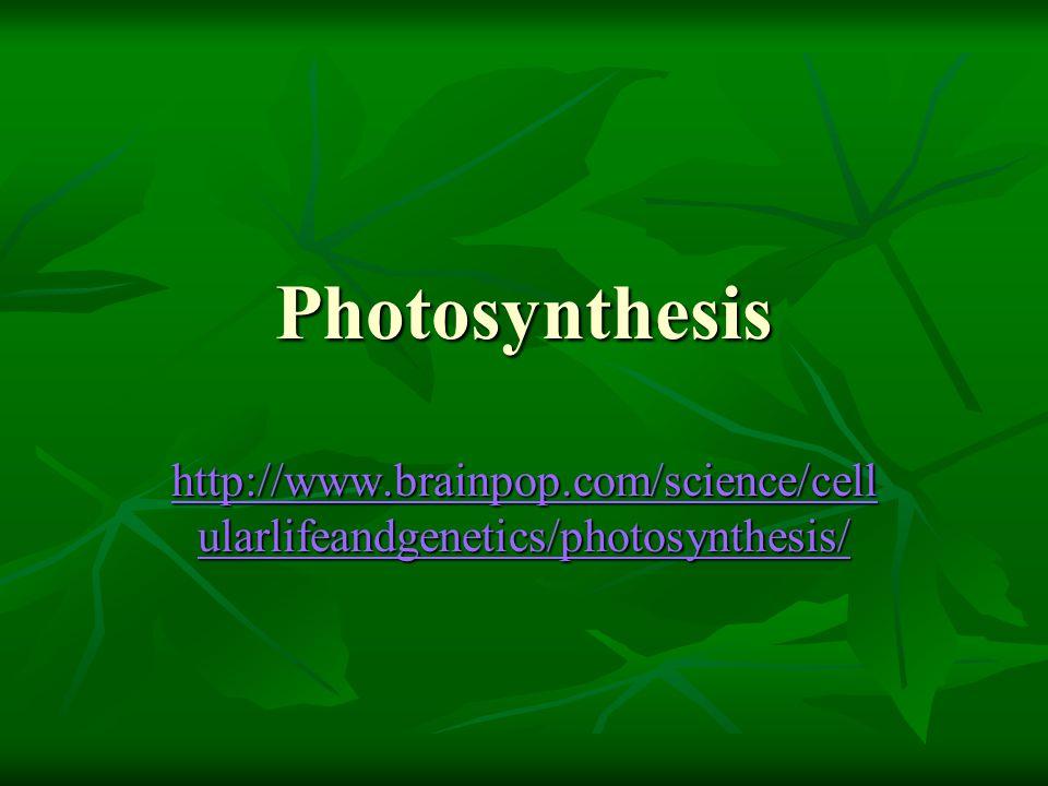 Photosynthesis http://www.brainpop.com/science/cell ularlifeandgenetics/photosynthesis/ http://www.brainpop.com/science/cell ularlifeandgenetics/photo