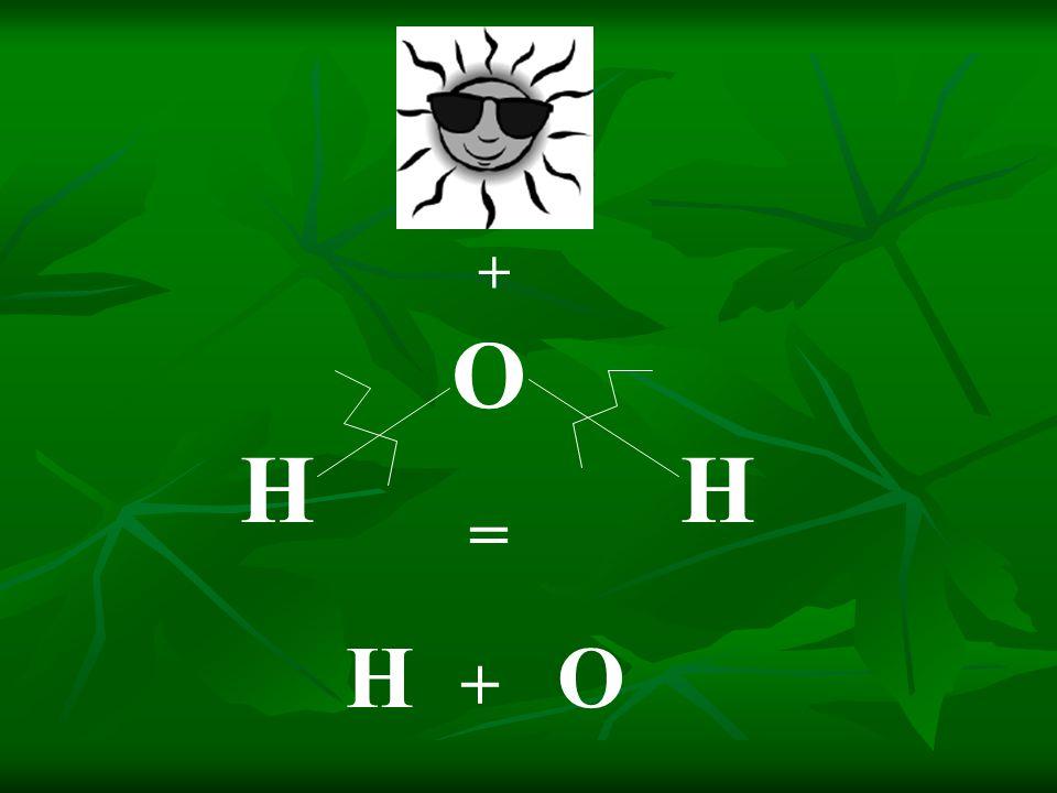 H O H + = H + O