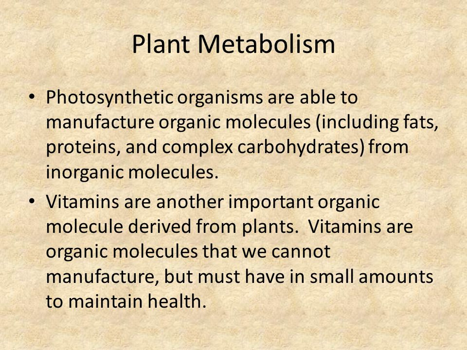 Plant Metabolism Photosynthetic organisms are able to manufacture organic molecules (including fats, proteins, and complex carbohydrates) from inorgan