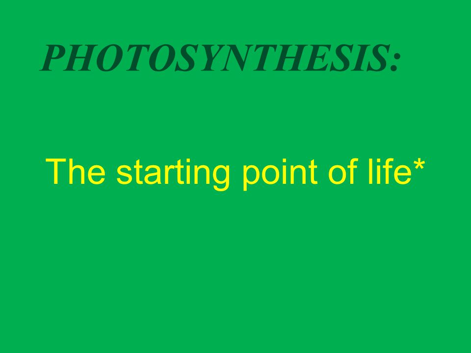 PHOTOSYNTHESIS: The starting point of life*