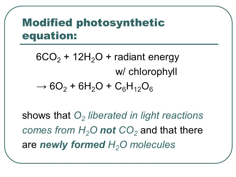 Modified photosynthetic equation: 6CO 2 + 12H 2 O + radiant energy w/ chlorophyll → 6O 2 + 6H 2 O + C 6 H 12 O 6 shows that O 2 liberated in light reactions comes from H 2 O not CO 2 and that there are newly formed H 2 O molecules