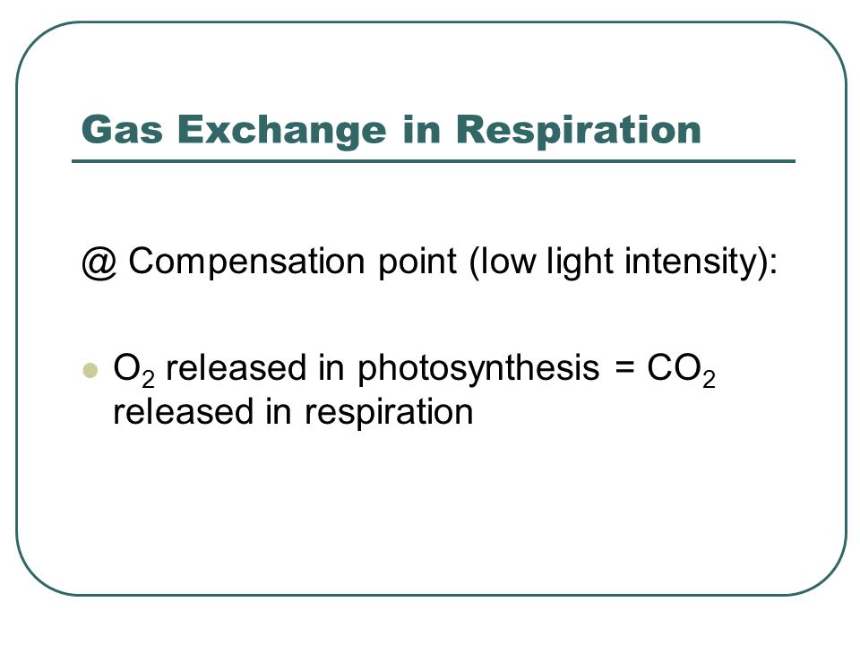 Gas Exchange in Respiration @ Compensation point (low light intensity): O 2 released in photosynthesis = CO 2 released in respiration