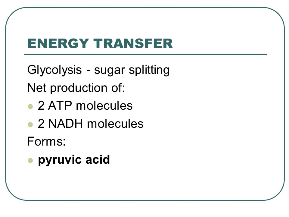 ENERGY TRANSFER Glycolysis - sugar splitting Net production of: 2 ATP molecules 2 NADH molecules Forms: pyruvic acid