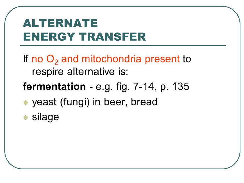ALTERNATE ENERGY TRANSFER If no O 2 and mitochondria present to respire alternative is: fermentation - e.g.