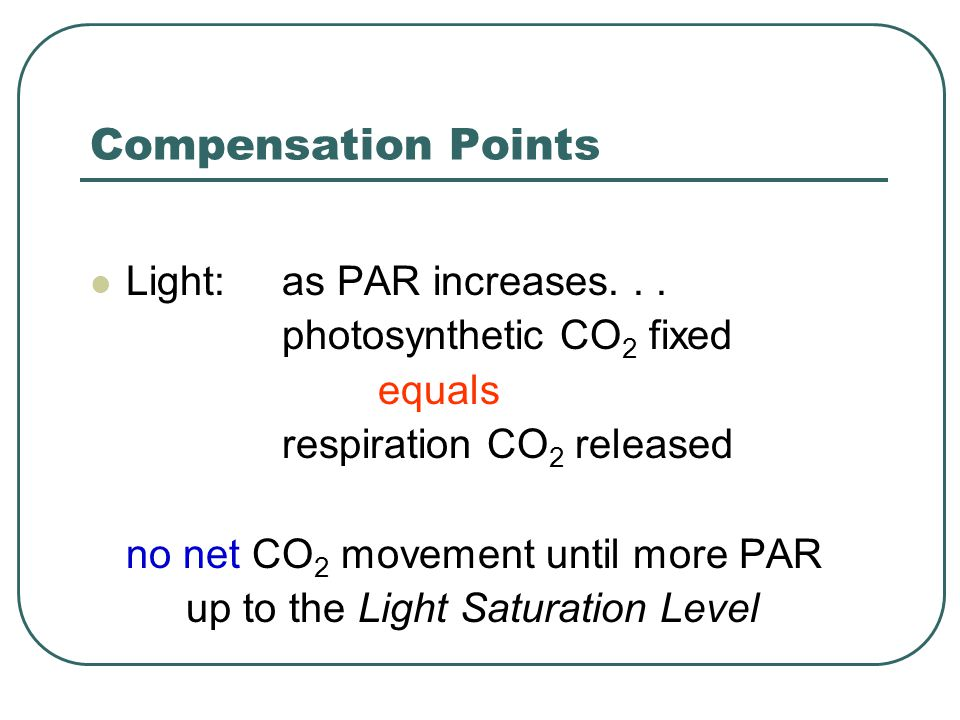 Compensation Points CO 2 : CO 2 fixed by photosynthesis equals CO 2 released by respiration no net CO 2 movement